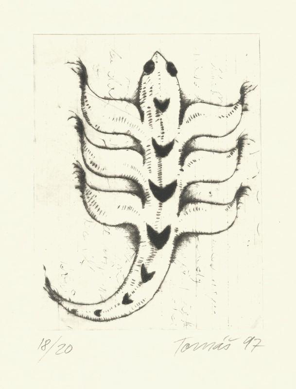 Hřivnáč Tomáš - Staré zvíře - Grafika