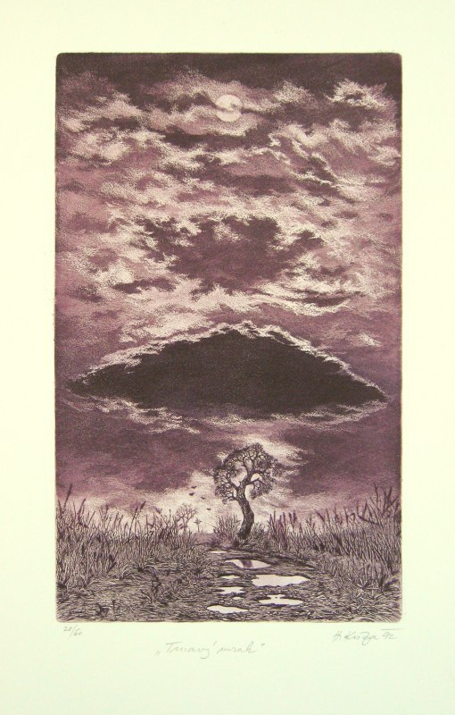 Kisza Herbert - Tmavý mrak - Grafika